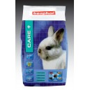 Beaphar Care+ Junior Rabbit Food